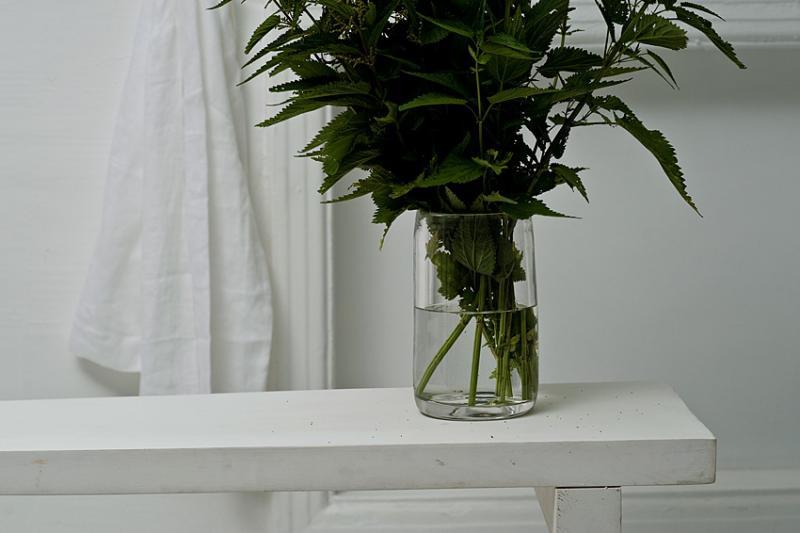 Glassware RIIJA